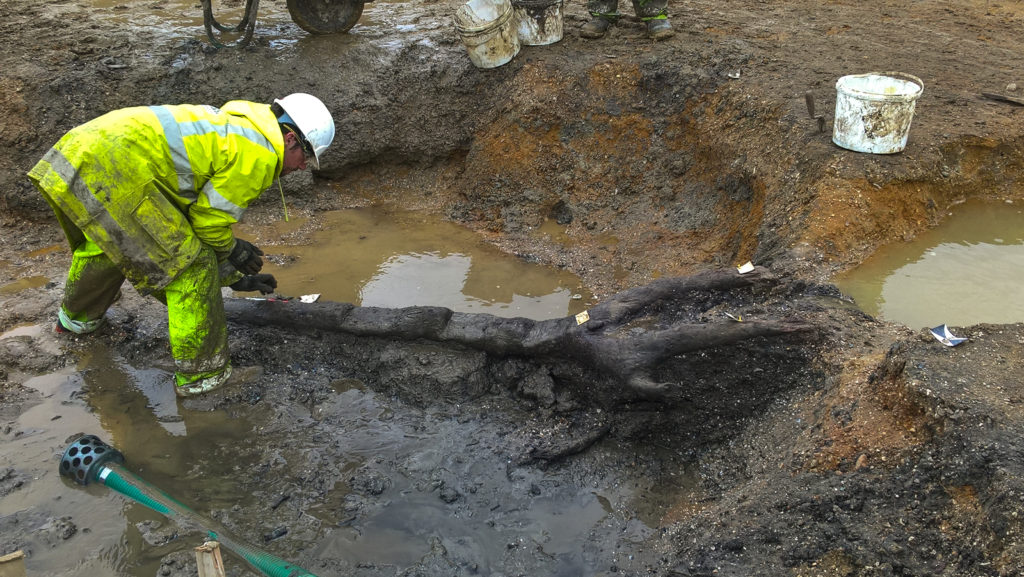 Middle Iron Age wooden ladder discovered in Cambridgeshire (c) A14C2H courtesy of MOLA Headland Infrastructure