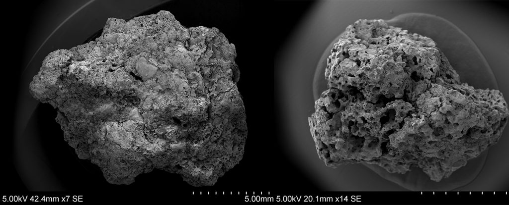 Left - microscopic sample on the showing what is believed the be the earliest evidence of beer making in the UK. Right – evidence of bread making (c) Highways England courtesy of MOLA Headland