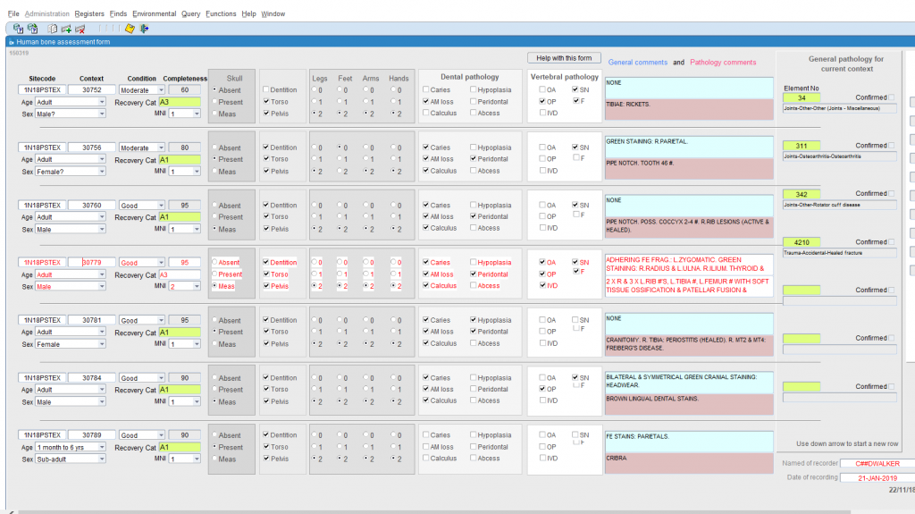 Fig 2 Oracle assessment database